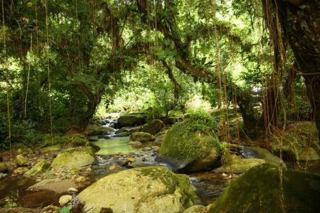 Endecken Sie die präkolumbianische Ausgrabungsstätte Ciudad Perdida auf einer aktiven Trekkingtour