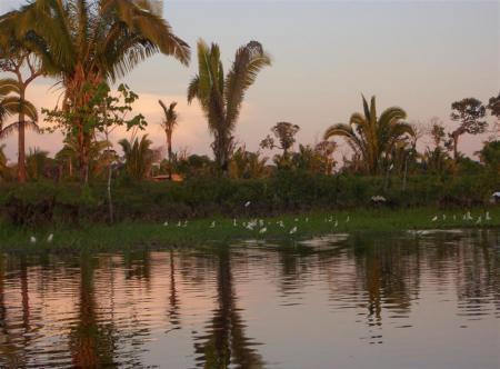 Hoch-und Abseilen Manaus1