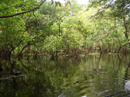 Hoch-und Abseilen Manaus2