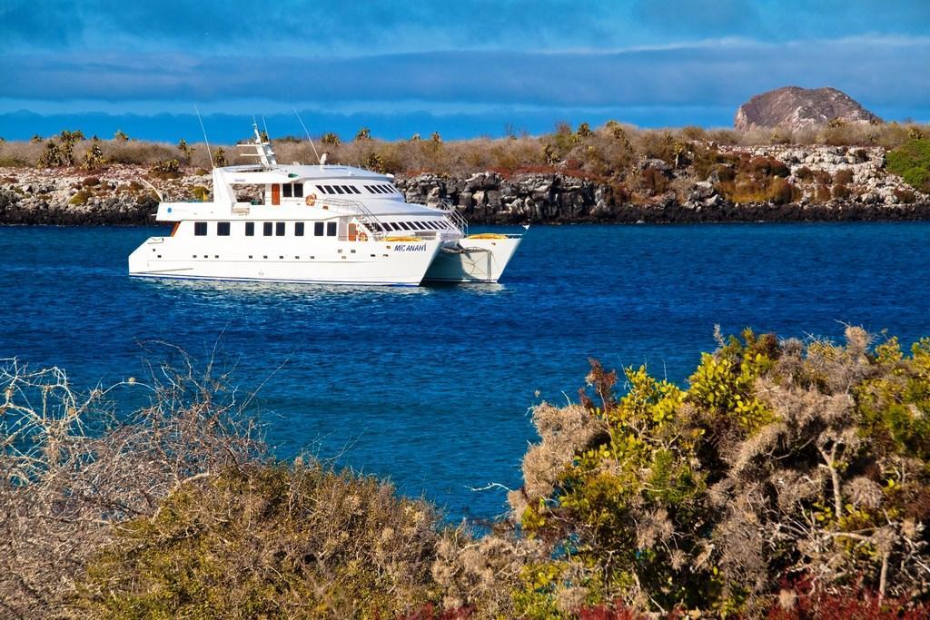 Begeben Sie sich auf die Anahi Yacht und unternehmen Sie eine Galapagos Kreuzfahrt