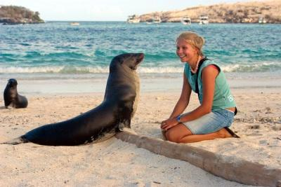 Seelöwe am Strand des Pazifiks bei einer Ecuador Galapagos Reise