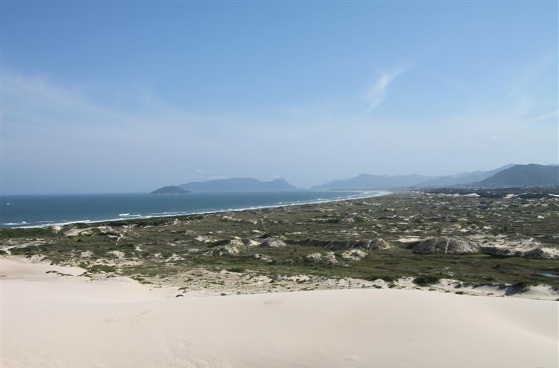 sandboarden1