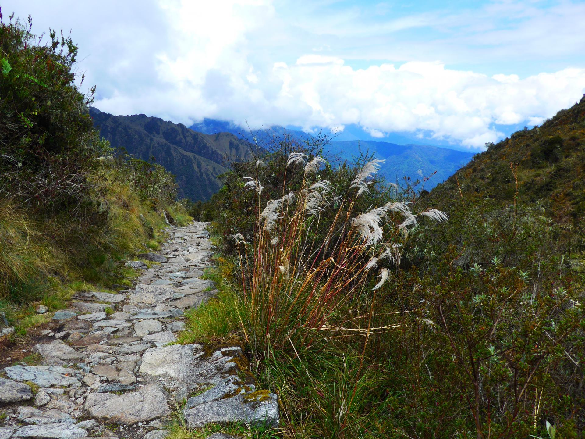 Erleben Sie eine Wandertour von Salkantay nach Machu Picchu in Peru
