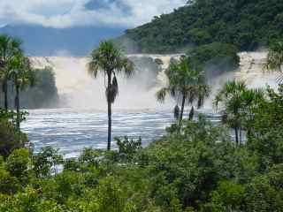 Best_of_Canaima_3