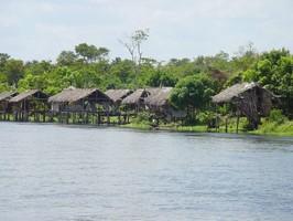 Hütten im Orinoco Delta bei einer Reise durch Venezuela.