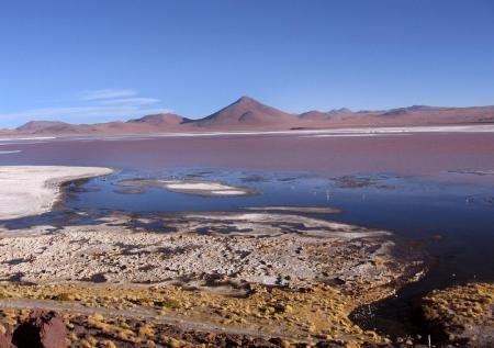 Besuchen Sie die einzigartige Laguna Colorada auf einer Rundreise in Bolivien