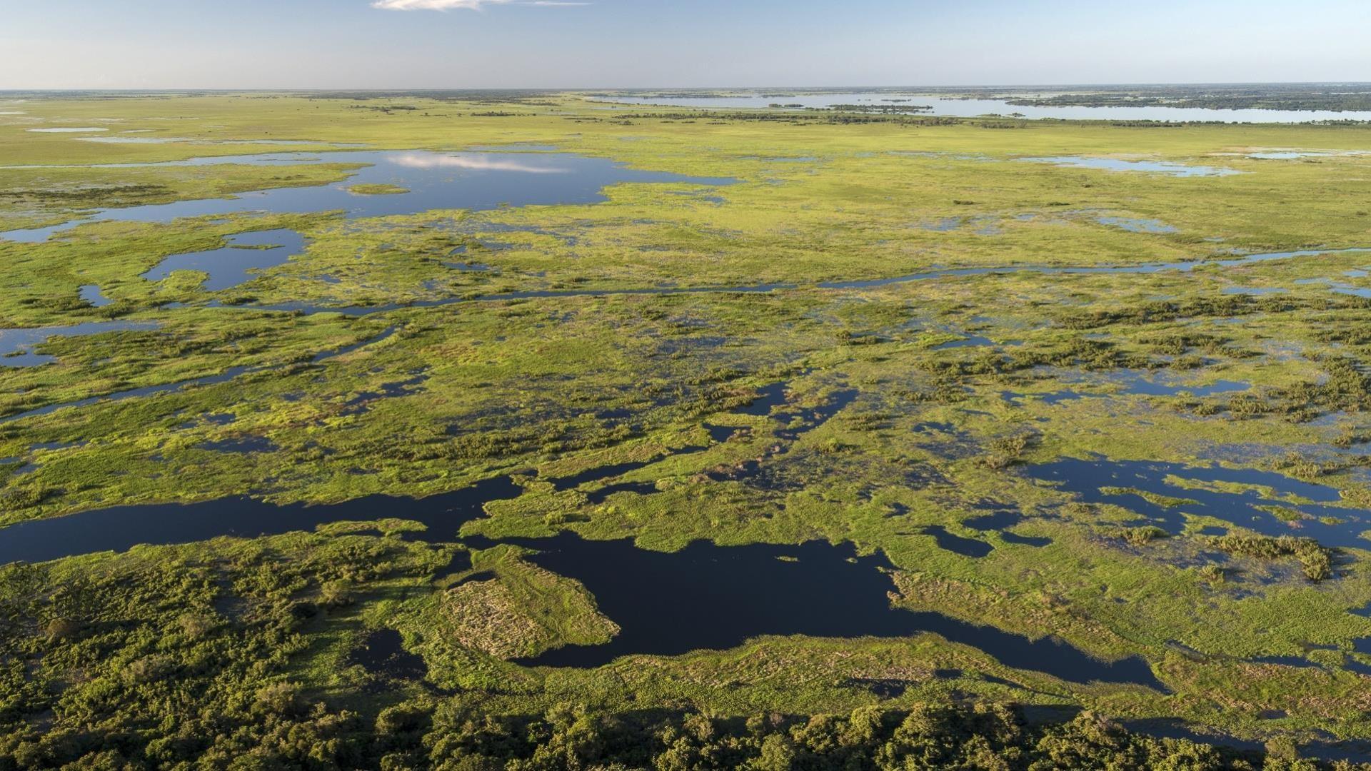 Brasilien Nord Pantanal: 4 Tage Reisebaustein - Pousada Piuval naturnah erleben