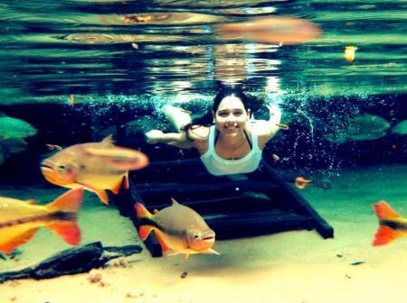Fische im glaskleren Wasser in Bom Jardim bei Nobres