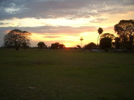 Farbenintensiver Sonnenuntergang im Nord-Pantanal