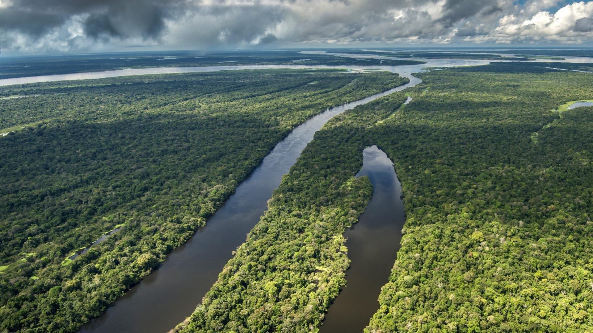Brasilien Amazonas Tefe: 4 bis 8 Tage Reisebausteine - Uakari Lodge