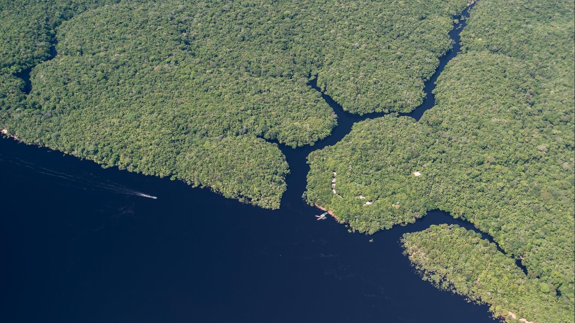Brasilien Amazonas: 3 Tage Reisebaustein - Anavilhanas Jungle Lodge
