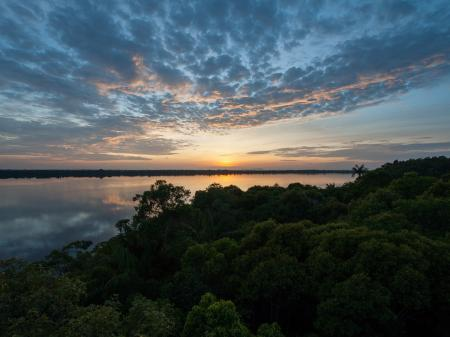 Wunderschöner Sonnenuntergang im Amazonas