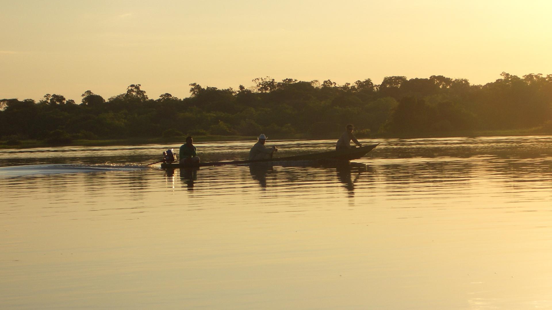 Reisebaustein - Schiffsexpedition Pink Dolphin in Kleingruppe auf dem Amazonas in Brasilien