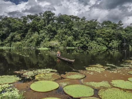 Kanufahrer und riesige Wasserlilien am Rio Negro im Amazonasgebiet
