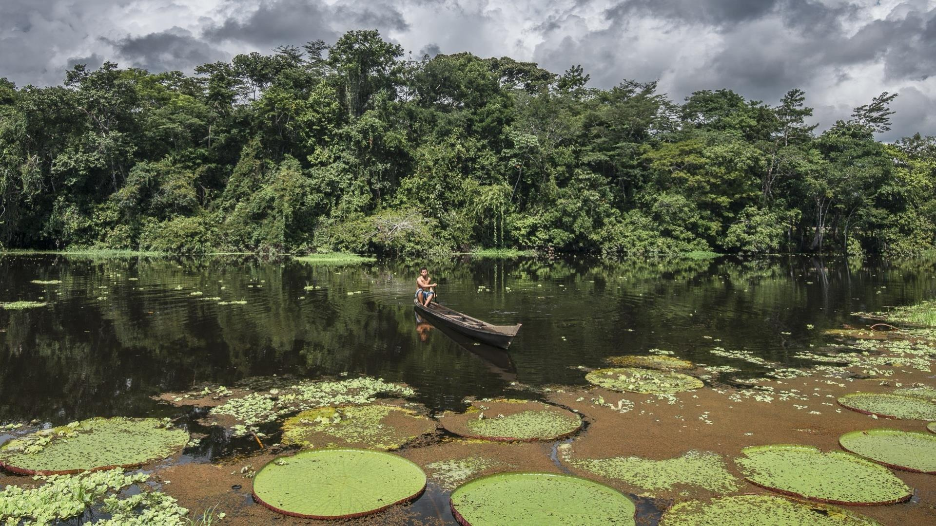 Brasilien Amazonas: 2 Tage Reisebaustein - Juma Amazon Lodge Jacana Paket