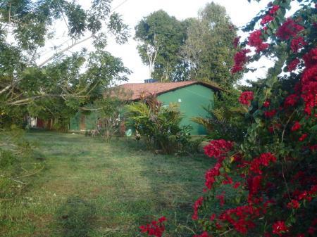Rote trpische Blumen und ein grünes Bungalow der Pousada Fazenda Rio Negro