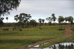 Brasilien_Bolivien_Paraguay_Erlebnisreise_Suedamerika_Valle Tucavaca