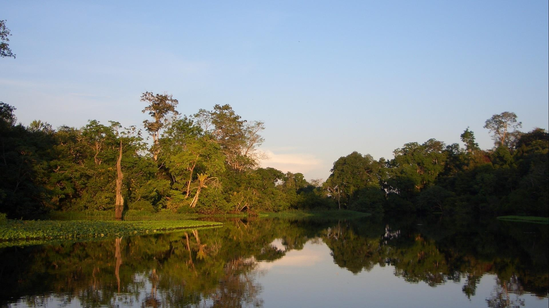 Brasilien Amazonas: 3 Tage Reisebaustein - Tupana Lodge Tucano Paket