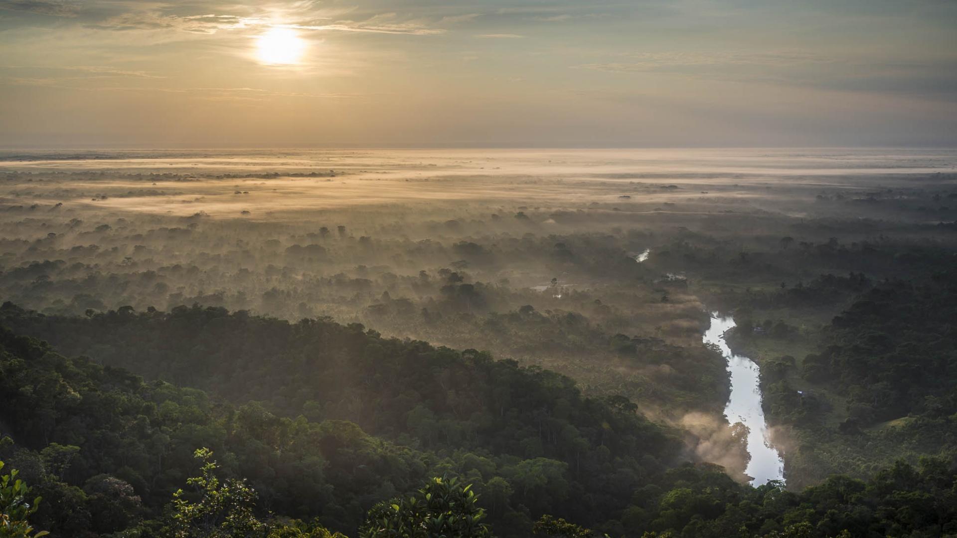 Brasilien Amazonas: 6 Tage Reisebaustein - Turtle Lodge Mamori Survival-Tour Sonnenaufgang über dem Amazonas