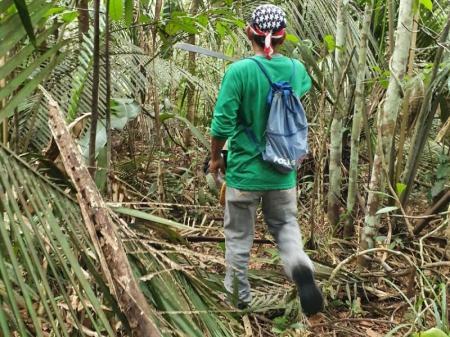 Spannende Ausflüge in den Amazonas-Regenwald