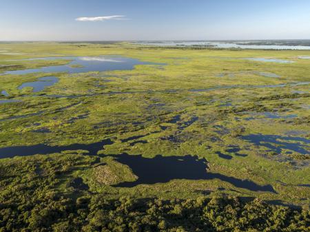 Luftaufnahme des traumhaften Nord-Pantanals