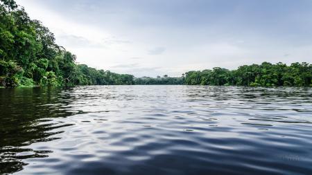 Entdecken Sie den Nationalpark Tortuguero auf einer Reise in Costa Rica