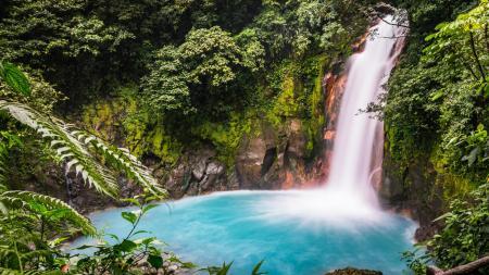 In Costa Rica unternehmen Sie Ausflüge in die schöne Natur des Landes
