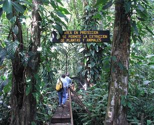 CostaRica_KaribischeTräume_Tag4_TortugueroPark