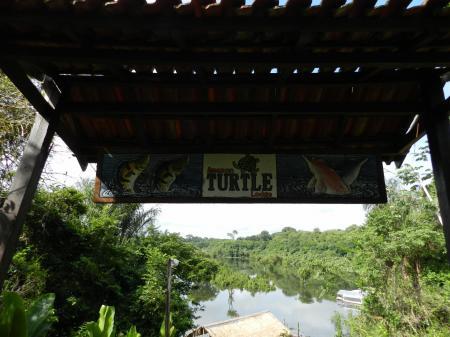 Blick von der Turtle Lodge auf den Fluss