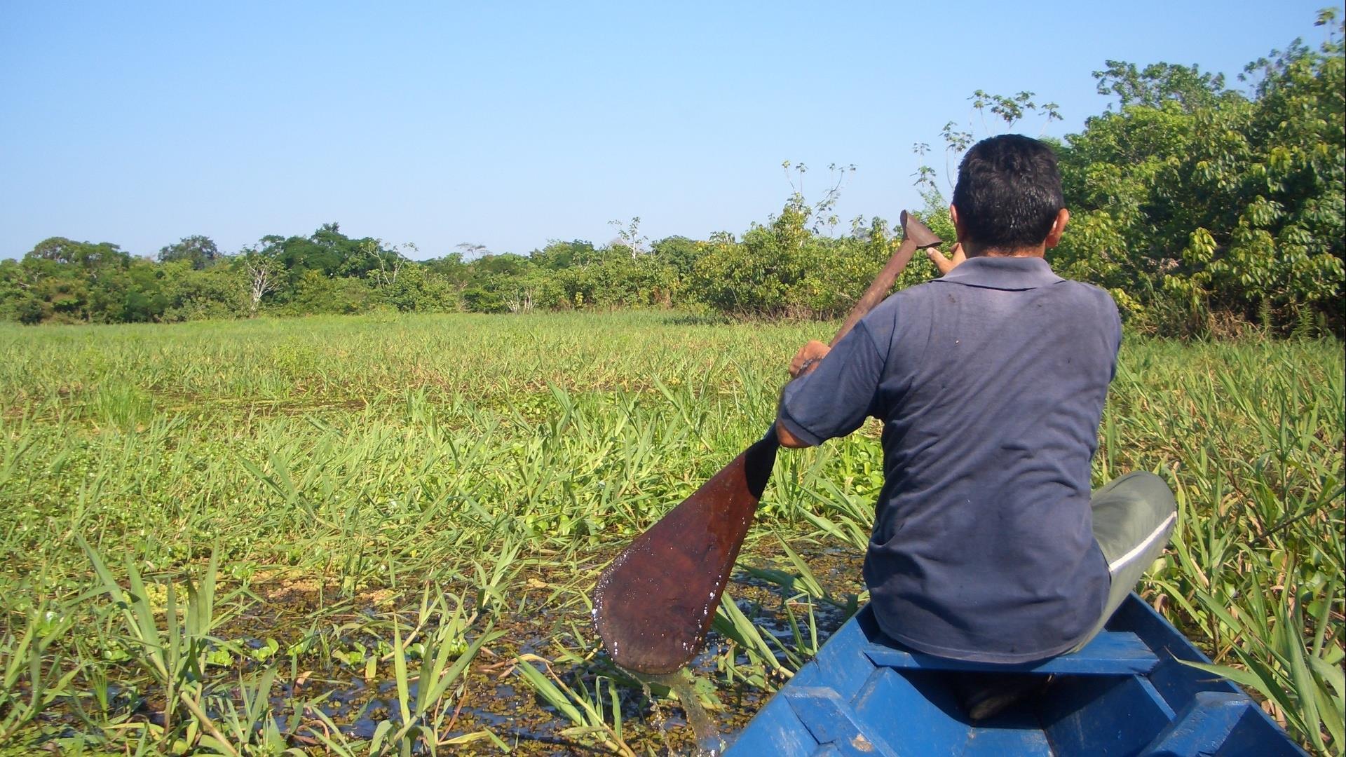 Brasilien Amazonas: 4 Tage Reisebaustein - Turtle Lodge Kayak Expedition: Guide im Kayak