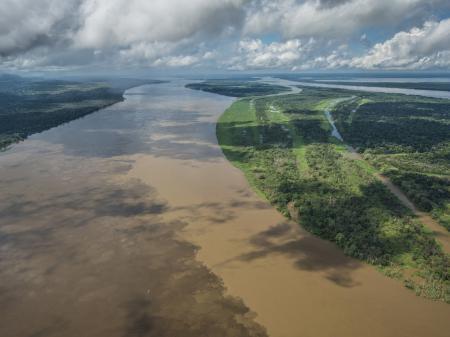 Wunderschöner Amazonas
