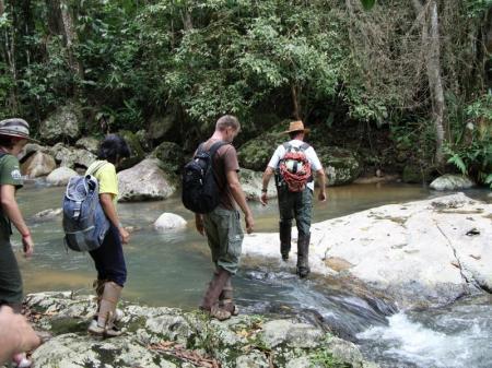 Ein Gruppe überquert einen Fluss im Atlantischen Regenwald von Santa Catarina