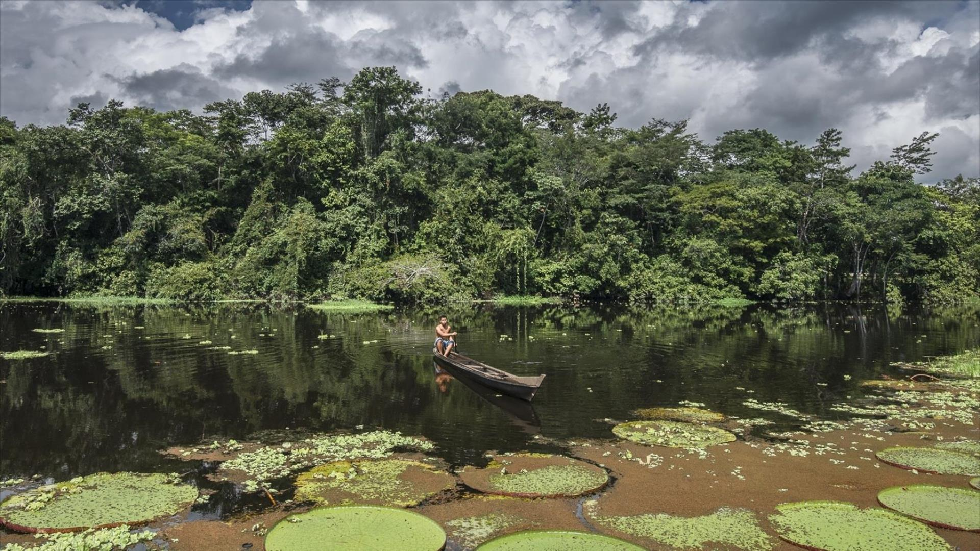 Brasilien | Rio de Janeiro, Foz do Iguacu, Urubici, Florianopolis, Amazonas, Salvador: 16 Tage Aktivreise in Kleingruppe - Brasilien Aktiv