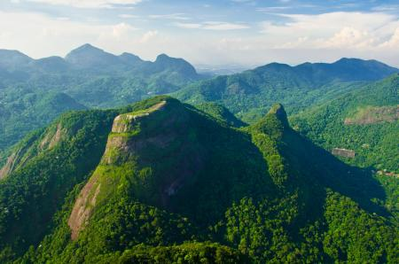 Reisen Brasilien Wanderung im Tijuca Nationalpark