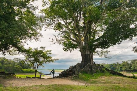 Uakari Lodge Blick auf das Wasser und Baum
