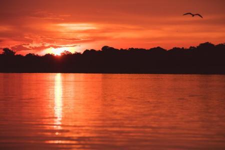 Sonnenuntergang in der Nähe der Uakari Lodge