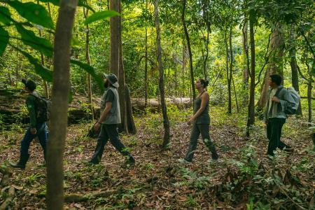 Uakari Lodge vier Wanderer im Regenwald