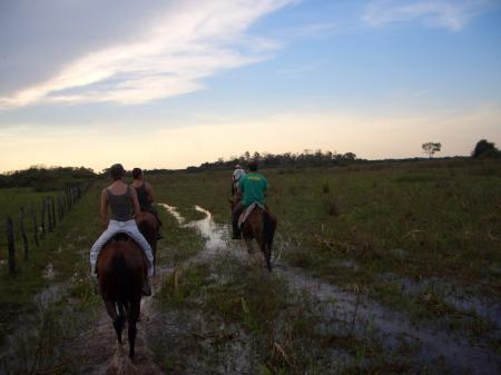 Auf dem Rücken der Pferde das Nord-Pantanal entdecken