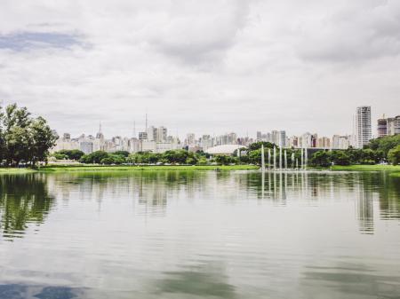 Natur am See des Parque Ibirapuera in Sao Paulo