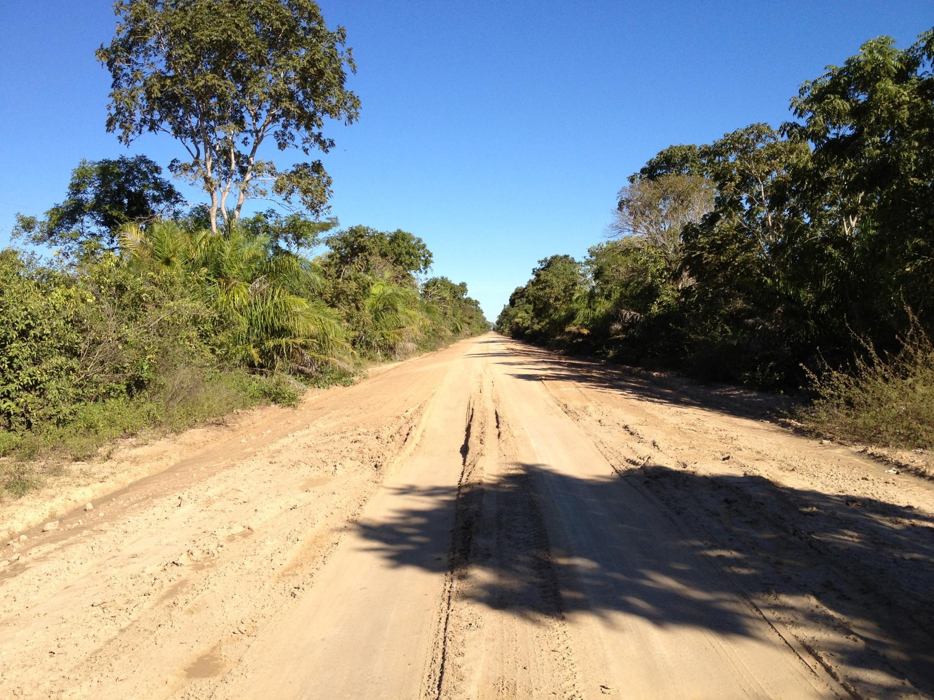 Mietwagenreise durch das Süd-Pantanal