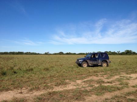 Mietwagen im Süd-Pantanal