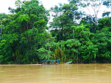 Begeben Sie sich auf eine spannende Tour im Amazonas Regenwald in Peru