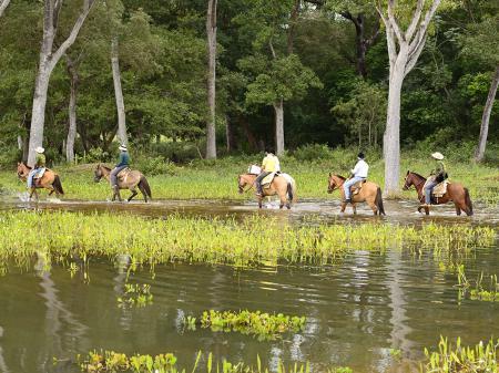 Gäste entdecken auf dem Rücken der Pferde das Pantanal
