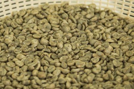 Erleben Sie den Kaffee Herstellungsprozess hautnah auf Ihrer Rundreise durch Kolumbien