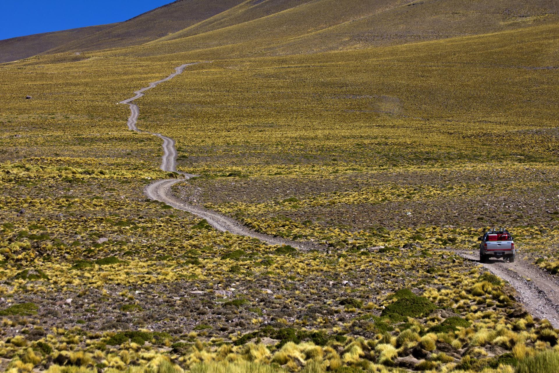 Entdecken Sie die Puna Wüste Argentiniens auf einer Rundreise mit uns