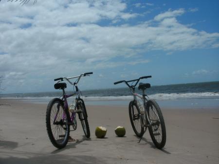 Zwei Fahrräder und zwei Kokosnüsse stehen am Strand