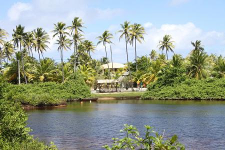 Palmengesäumtes Imbassai bildet Ende der 15 Tage Rundreise