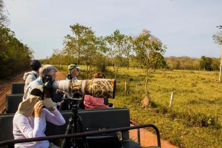 Tierbeobachtung per Jeep Pousada Aguapé