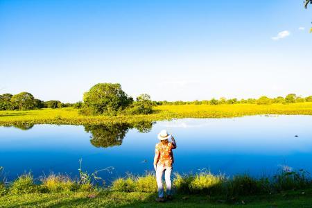 Natur pur im Pantanal