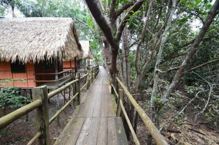 Stege vor den Bungalows der Tariri Amazon Lodge